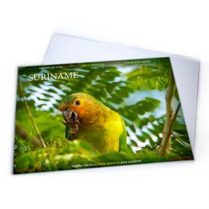 Placemat-Plastic<BR>Vogels-Krerekrere