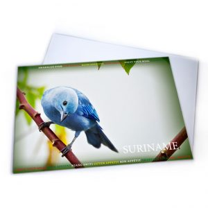 Placemat-Plastic<BR>Vogels-Blawki