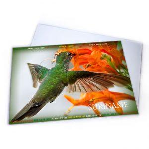 Placemat-Plastic<BR>Vogels-Kolibri01