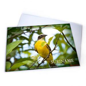 Placemat-Plastic<BR>Vogels-Grikibi01