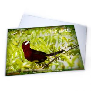 Placemat-Plastic<BR>Vogels-Rediken