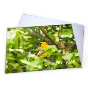 Placemat-Plastic-Vogels-Grikibi02