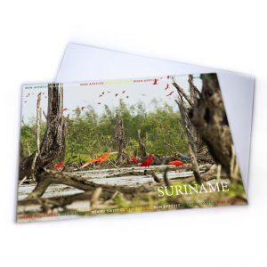 Placemat-Plastic<BR>Vogels-Rode ibissen