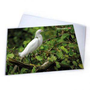 Placemat-Plastic<BR>Vogels-Sabakoe
