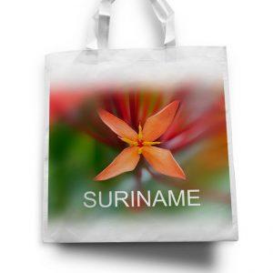 Tas – Suriname <BR>Fajalobi
