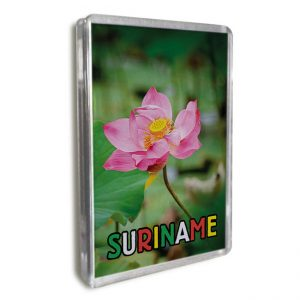 Magneet-Acrylic-Frame – Waterlelie