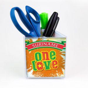 Pennenbak-OneLove-Bus-Schaafijs