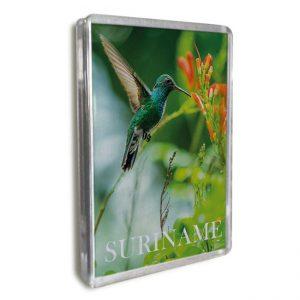 Magneet-Acrylic-Frame <BR> Kolibri