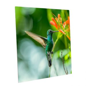 Fotopaneel-aluminium<BR>Kolibri02