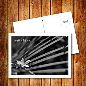 Ansichtkaart_ROU_LI_07